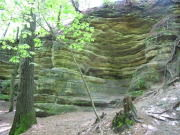 Image for Matthiessen State Park