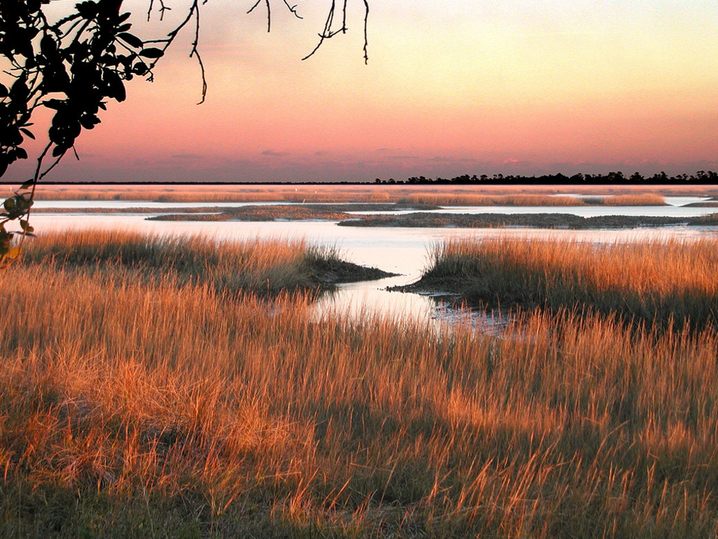 A winter sunset over the Lowcountry