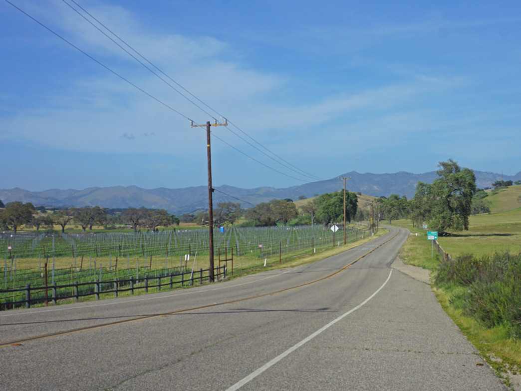 Santa Ynez vineyard valley