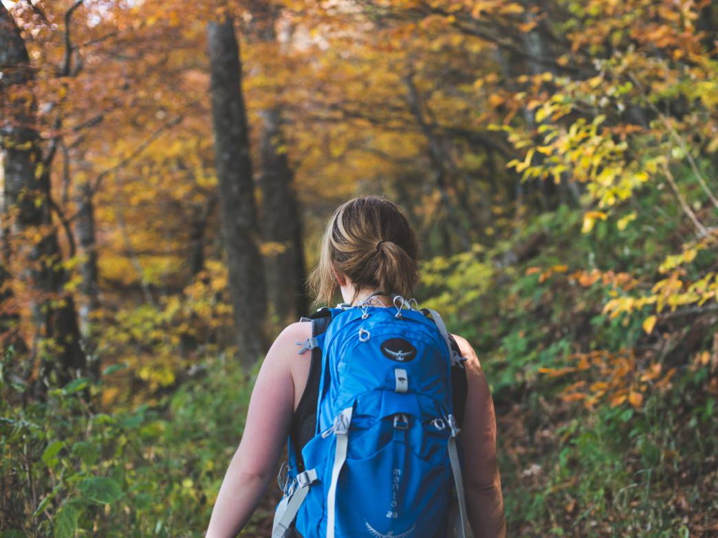 The 10 Best Hikes in the Smokies