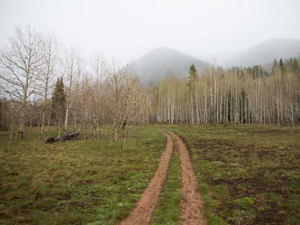 Upper Hunter Creek Valley provides beginners with a great intro to cross-country-style mountain biking.