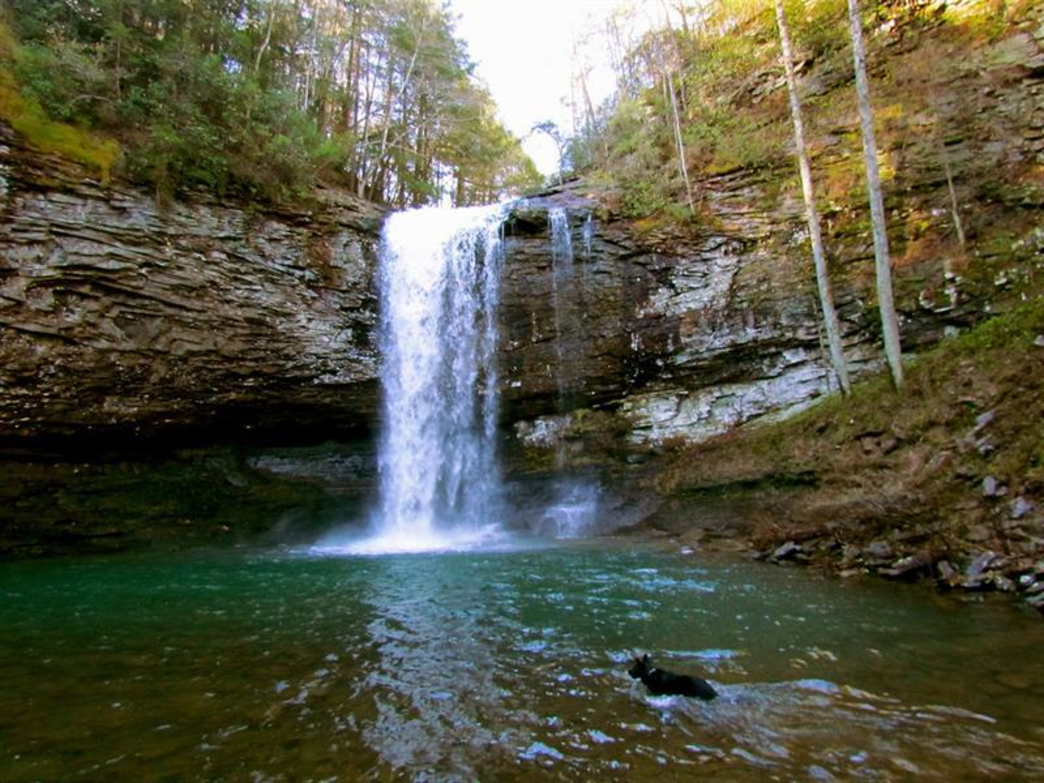 Cloudland Canyon State Park Backpacking Camping