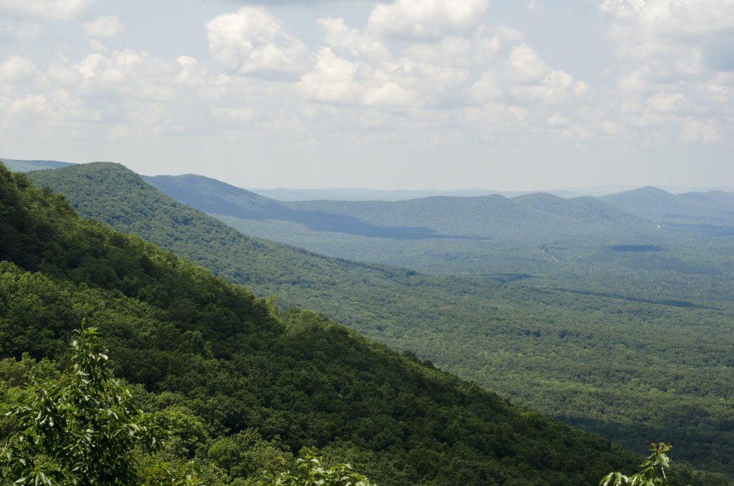 Cheaha is the place to go for amazing views.
