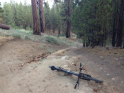 Image for Mount Pinos - Mountain Biking
