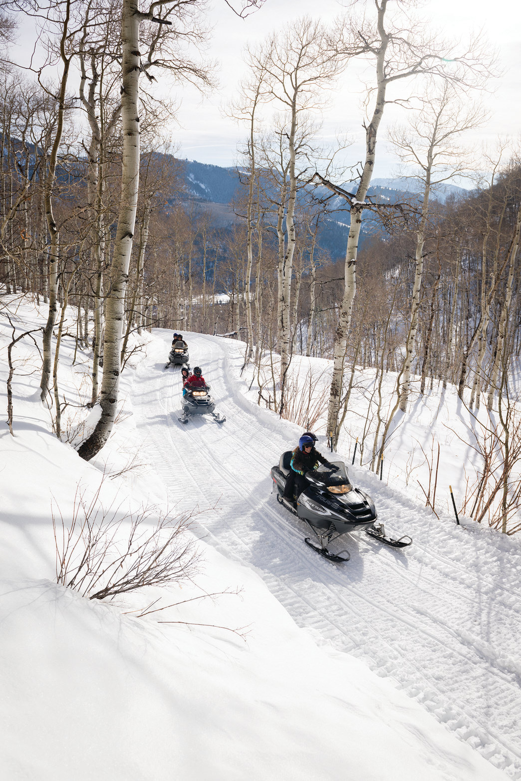 Tour the backcountry by snowmobile.
