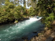 Image for The White Salmon River