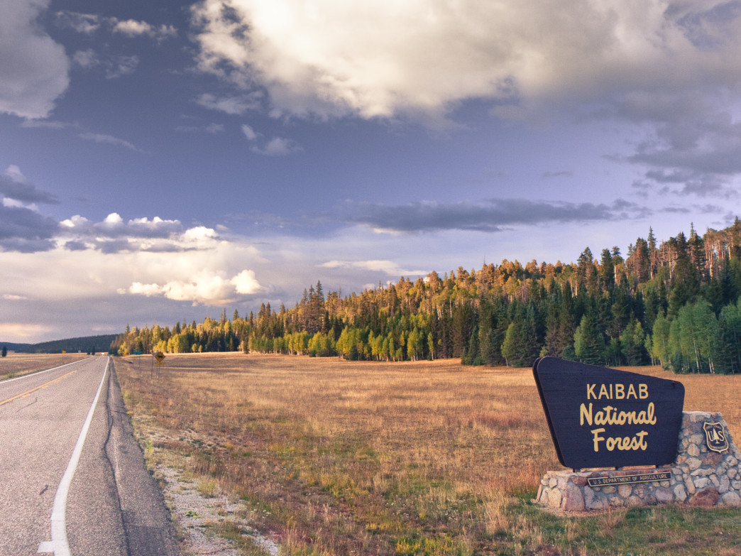 Signage at Kaibab National Forest.