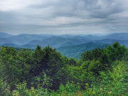 View from Siler Bald