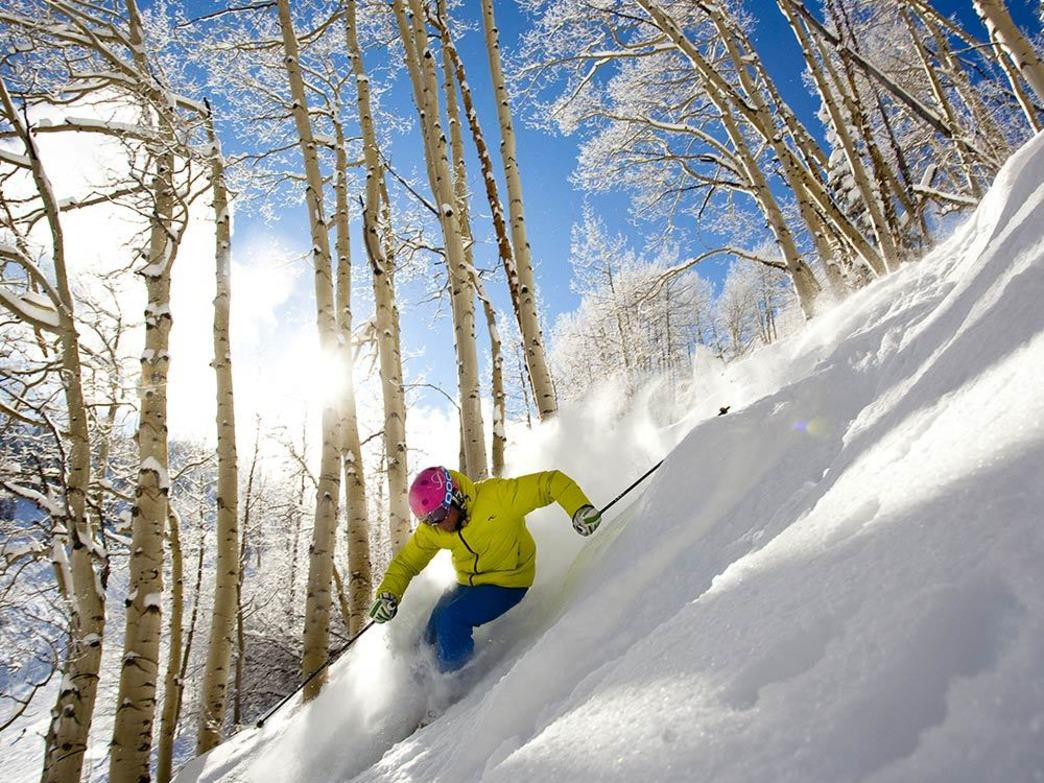 Now is the time to be daydreaming about steep runs through the trees.