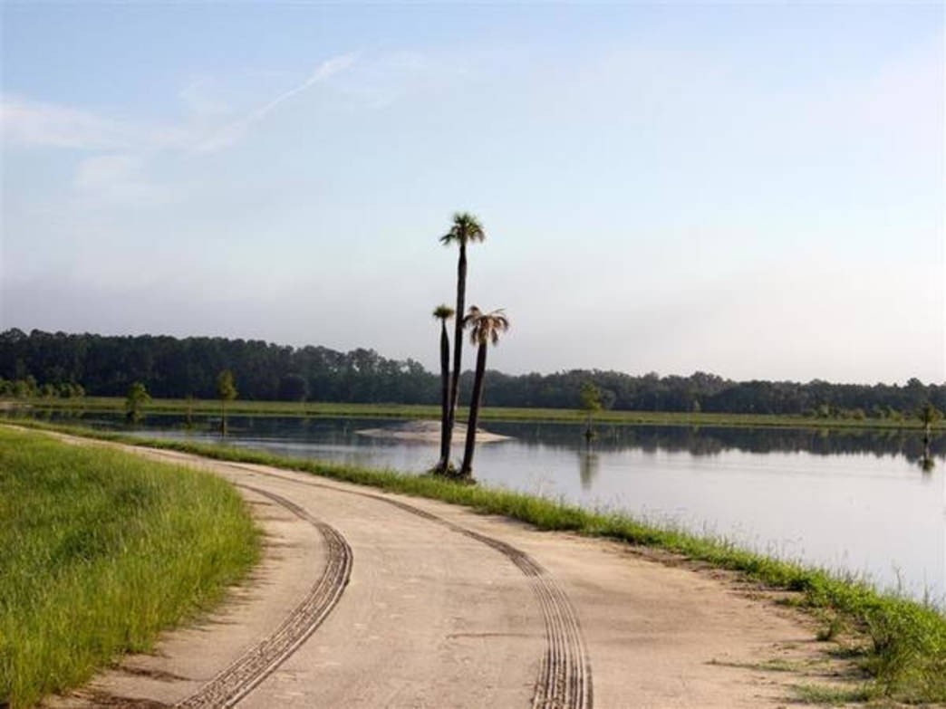 Image for Orlando Wetlands Park