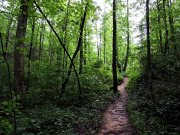 20170705_Rock Creek Gorge Waterfalls_Hiking14