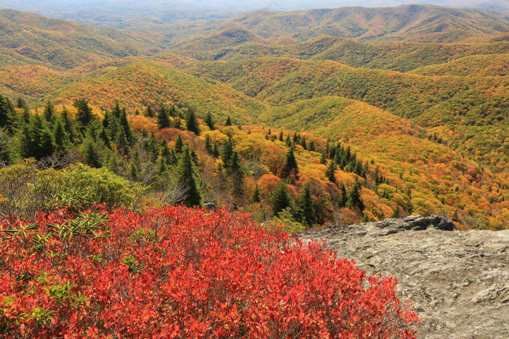 It takes only a half-mile hike to reach the panoramic views of the Devil's Courthouse.