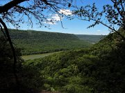 20170607_Tennessee_Chattanooga_Julia Falls Overlook_Hiking7