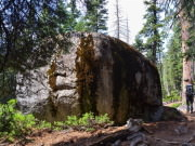 Image for Emigrant Wilderness