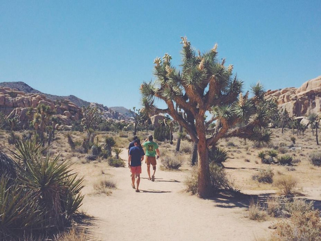 The hikes in Joshua Tree are short, flat, and totally worth it.