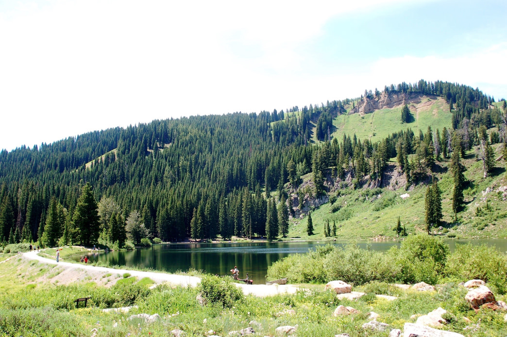 Discover Tony Grove Lake and enjoy other activities like hiking, climbing, camping and fishing nearby.