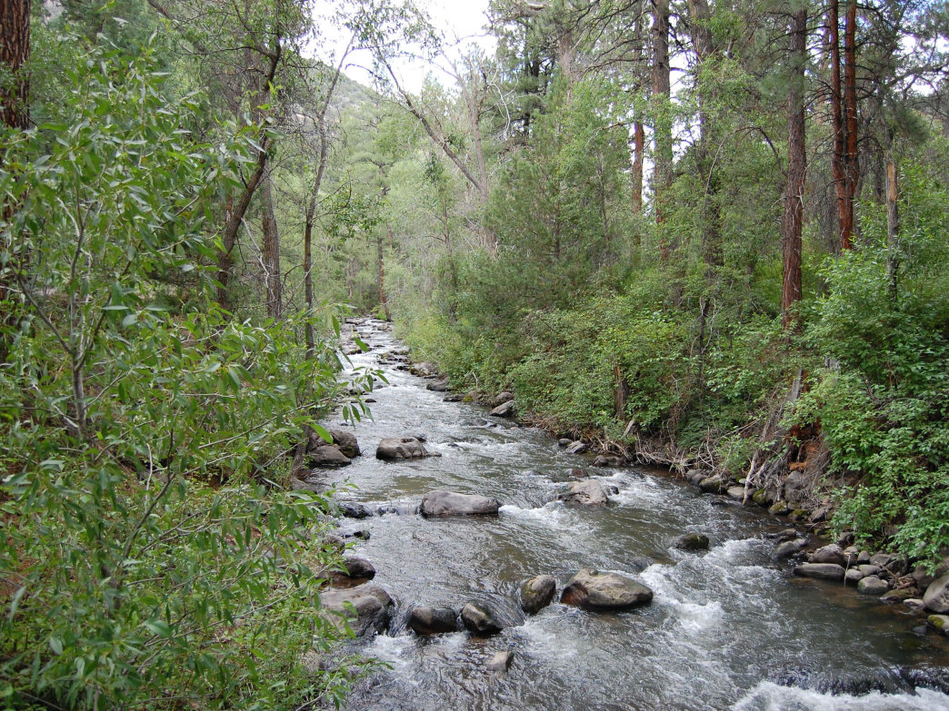 The Beaver River offers superb opportunities for fishing in Beaver County, Utah.