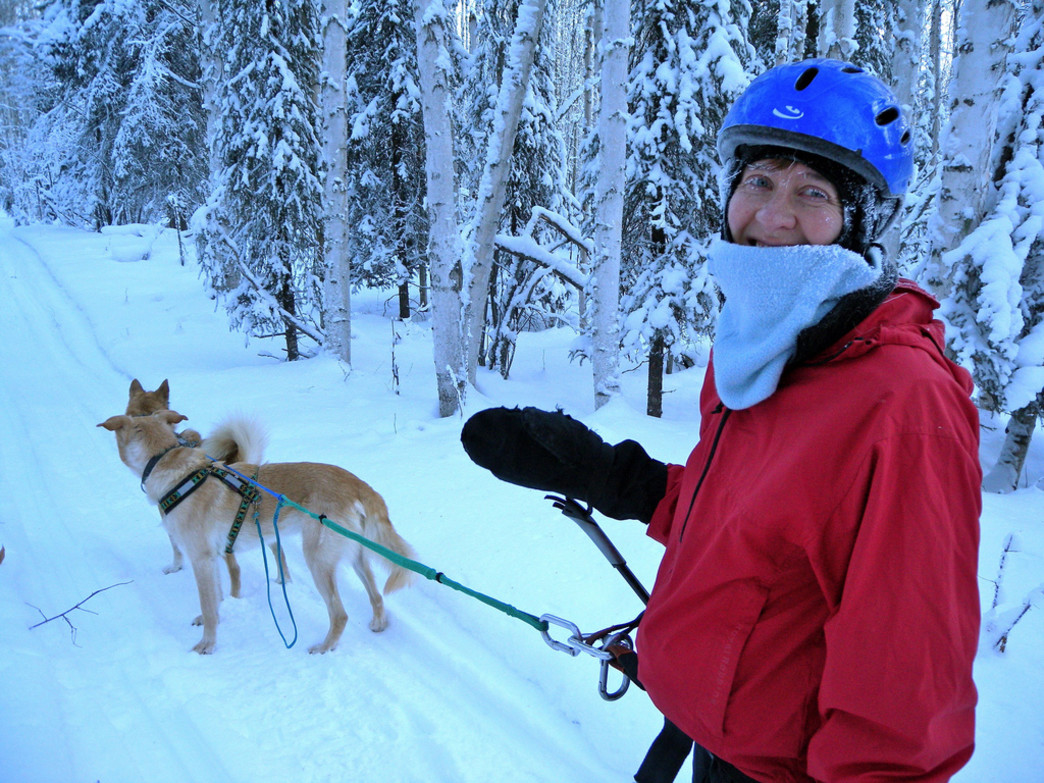 Bring your pups and go for a skijor along one of Pinedale's many excellent trails.