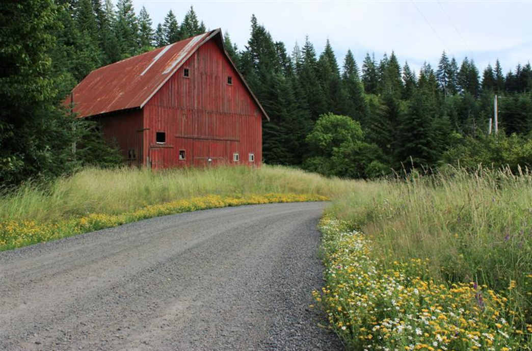 Banks Vernonia State Trail Cycling