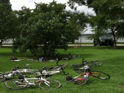 Image for Hains Point - Cycling