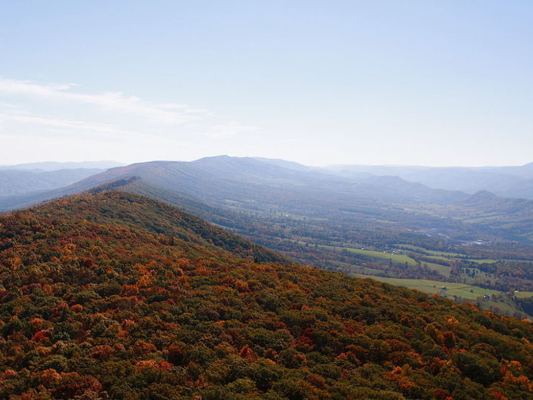 North Fork Mountain Trail provides sweeping views of the Alleghenies most of its 24 miles.