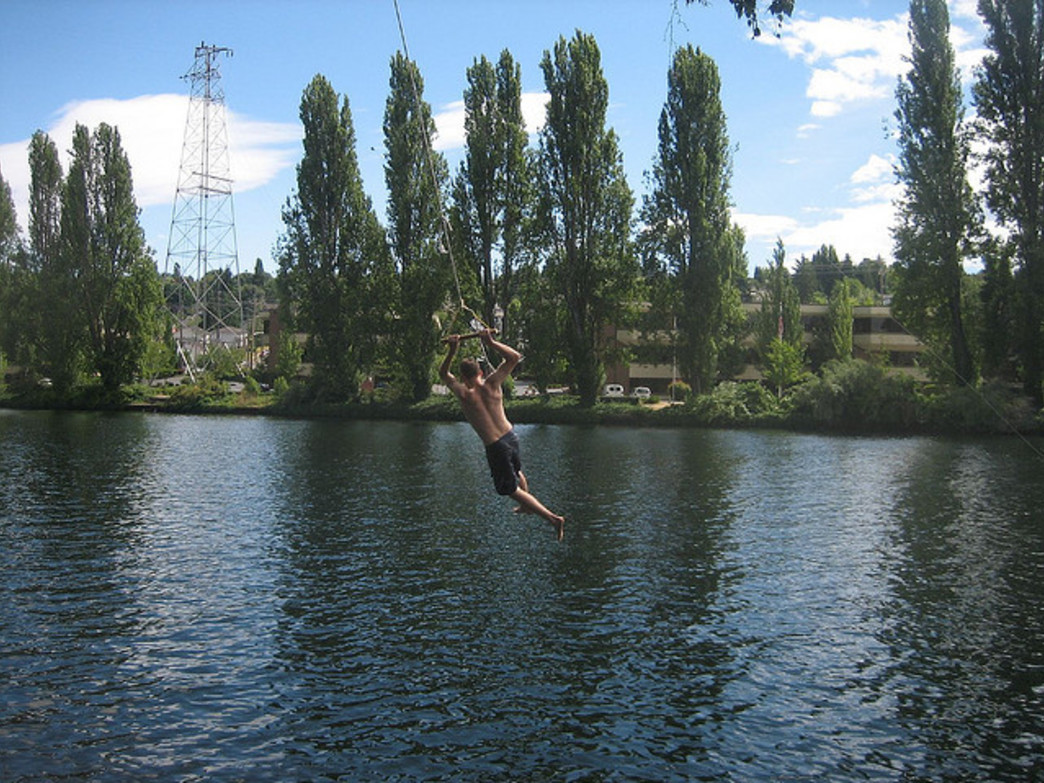 Nothing says summer like a rope swing!