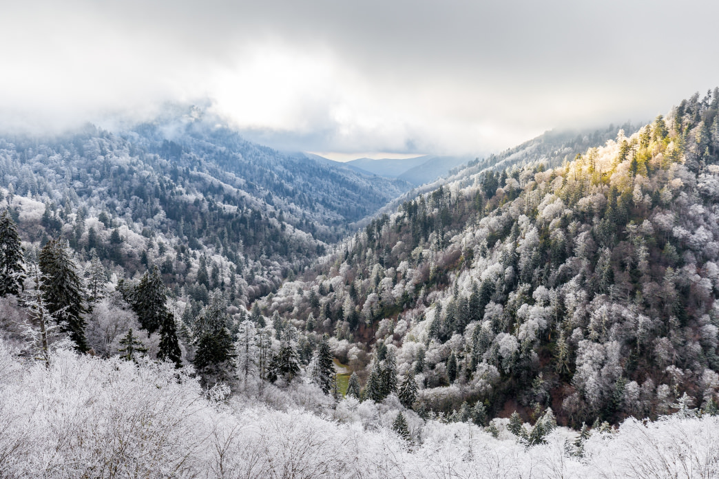 It's never guaranteed you'll see snowfall in the Smokies, but if you take the ambition to to plan and time it appropriately, it's an unforgettable experience.