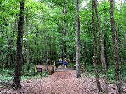 20170619_Tennessee_Chattanooga_Enterprise South_Trail Running1