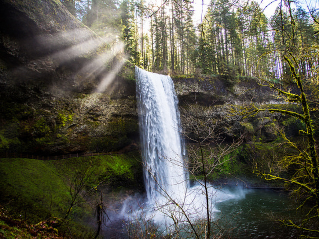 Silver Falls State Park is one of the most popular outdoor destinations in Oregon.