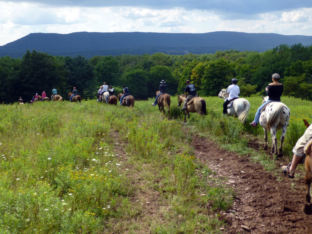 West Virginia has a variety of horse-friendly trails.