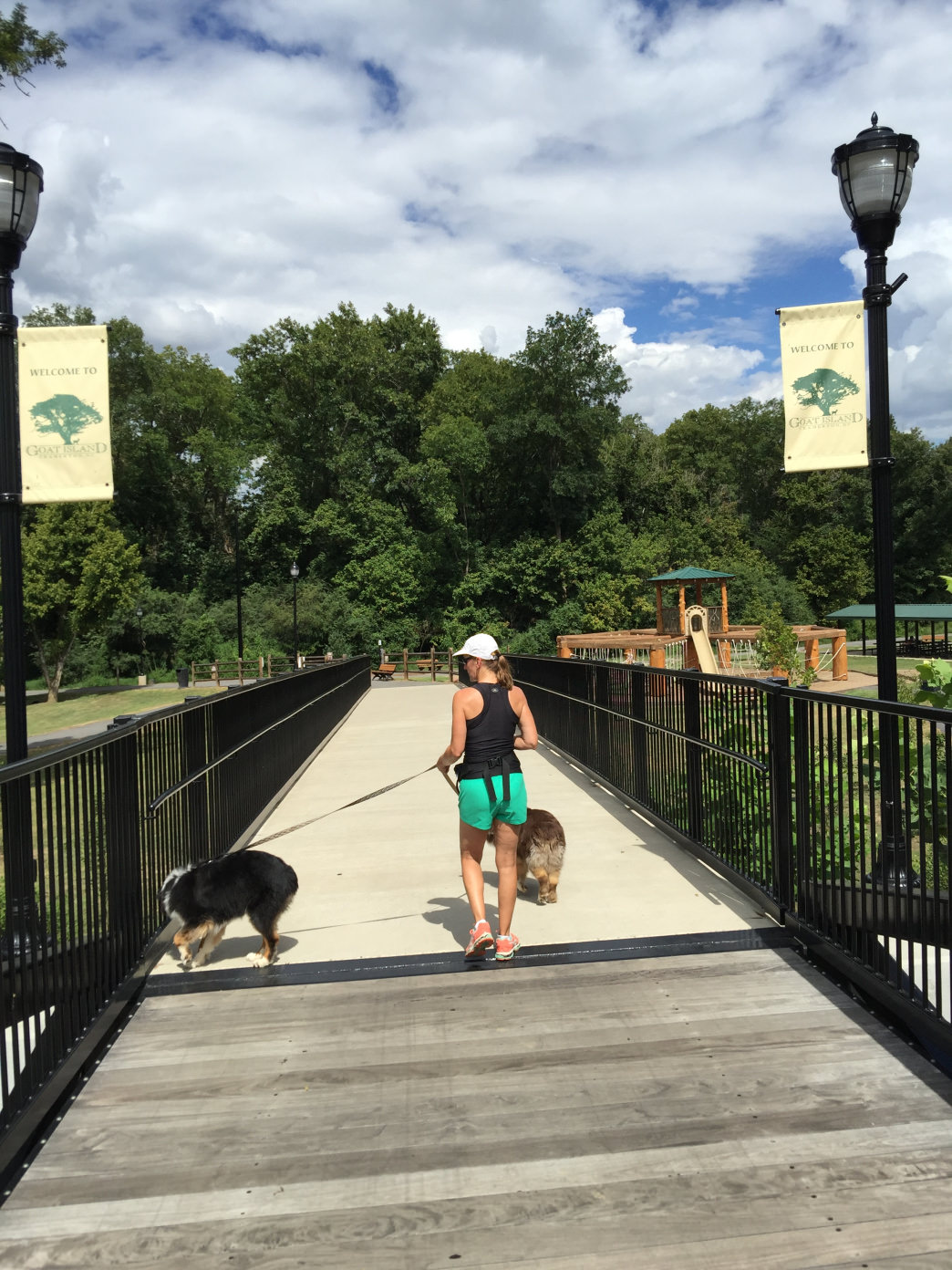Goat Island features a shaded dog park and plenty of shoreline for your pets to get wet.     Ann GIbson