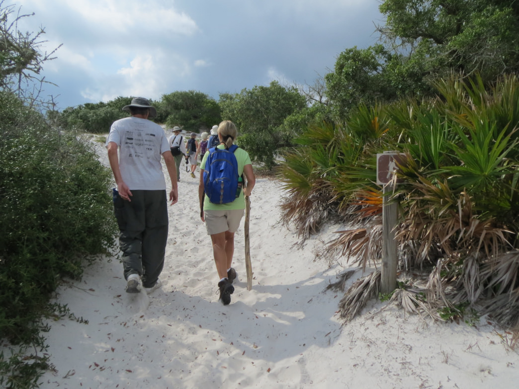 The far end of the Pine Beach Trail leads to a stunning secluded beach that's a prime nesting area for sea turtles.     Joe Cuhaj