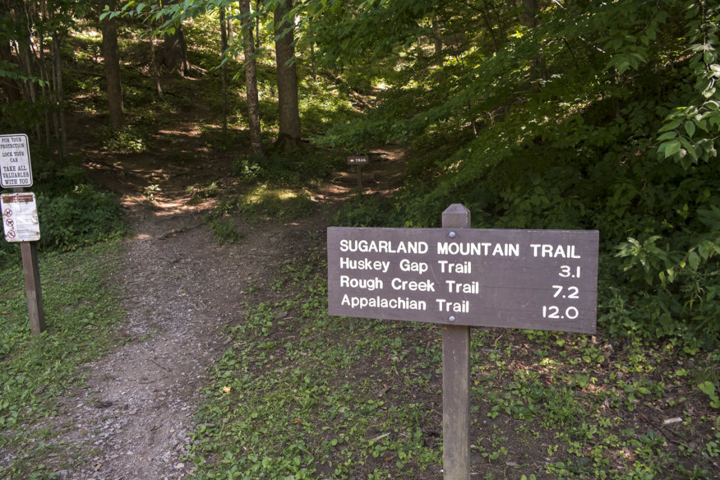 The Sugarland Mountain Trail is one of the more challenging routes up to Clingmans Dome.     Margie Hunter