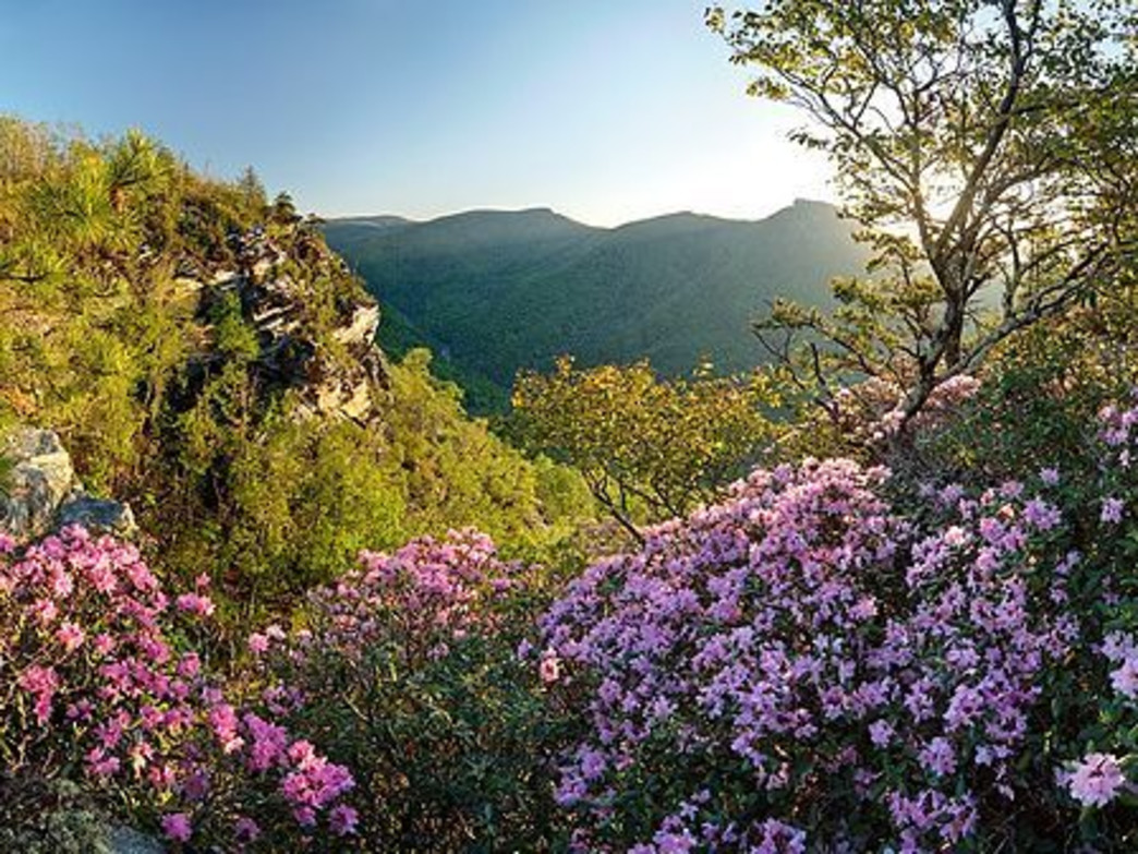 The Linville Gorge should be one of the first adventures on the agenda for 2016.