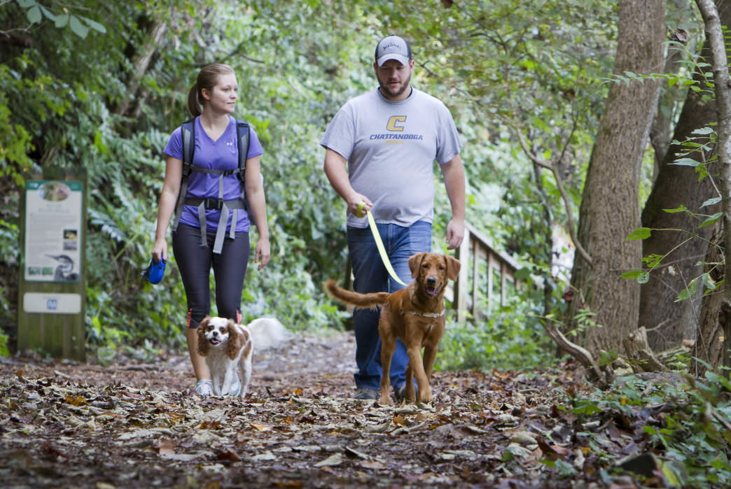 A couple walks their two dogs along the Riverwalk Trail at Ijams Nature Center.     Clay Duda