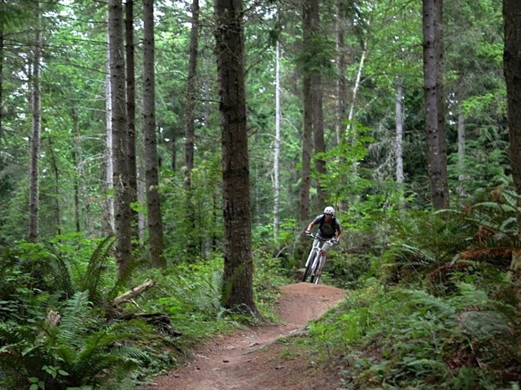 Enjoy relative solitude on the trails during early spring.
