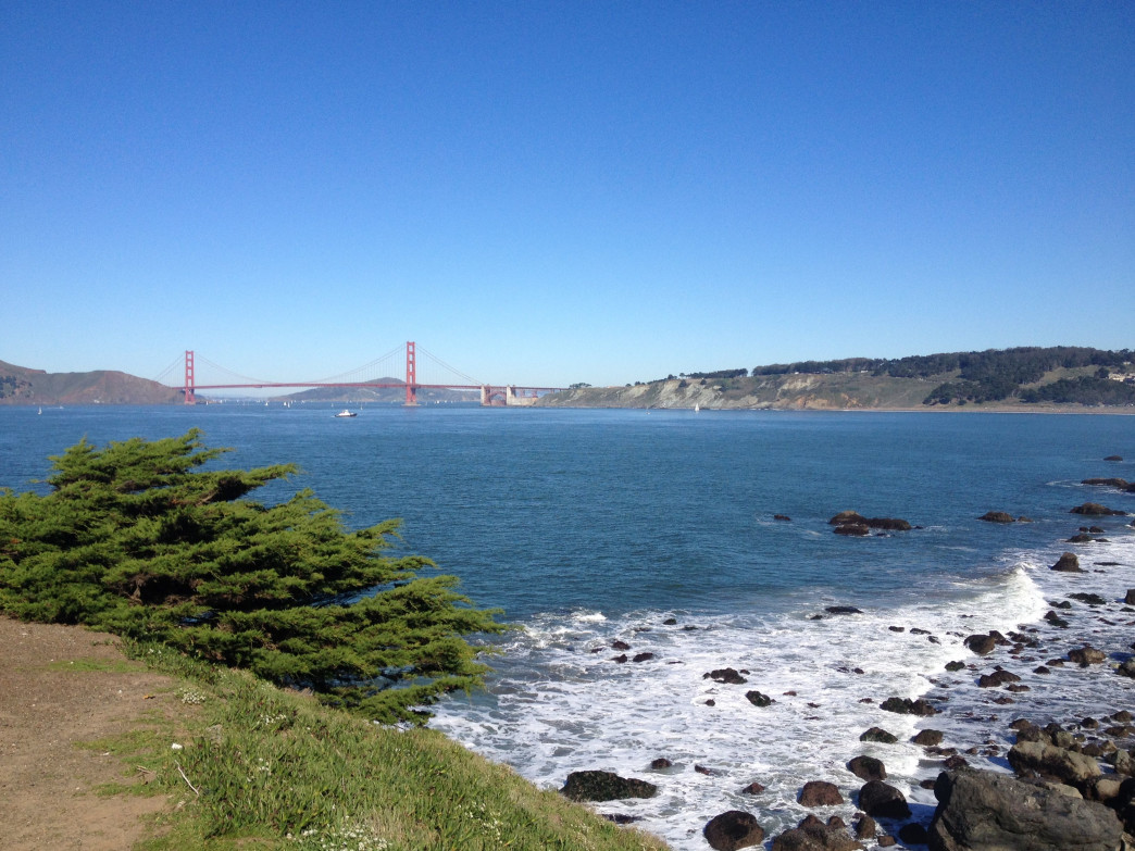 It's hard to take a bad shot at Land's End, the aptly named trail in SF's northwest corner.
