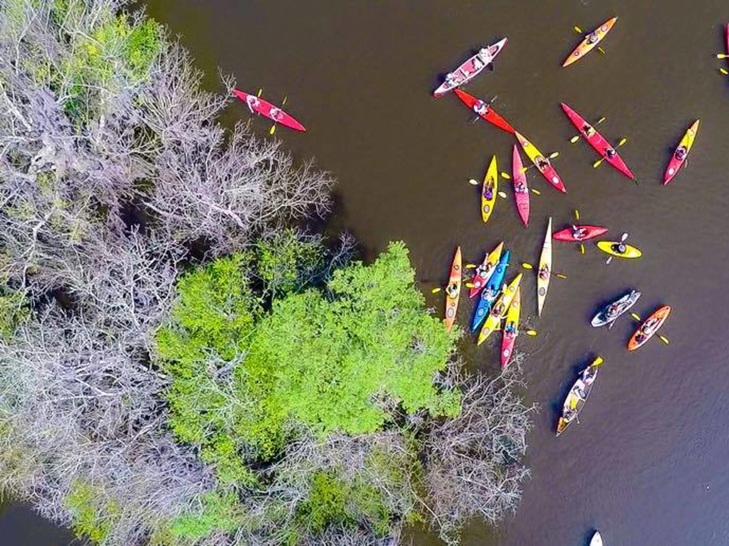 A drone shot of the Altamaha River.