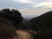 Image for Backbone Trail at Will Rodgers - Trail Running