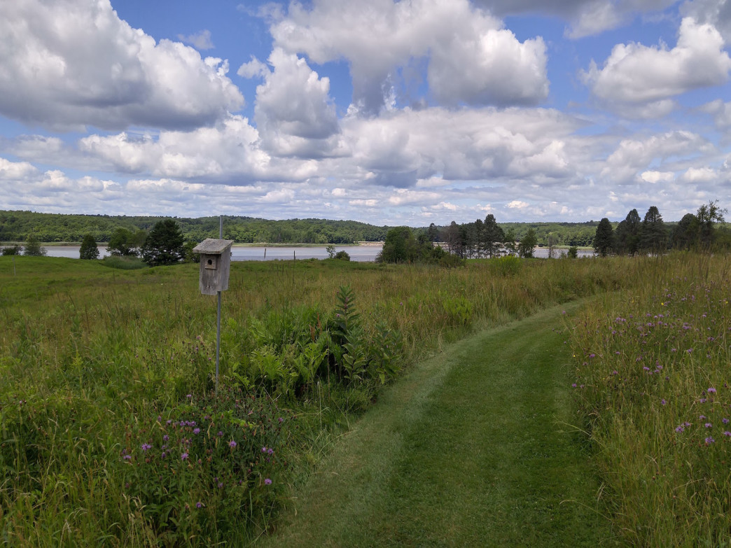 The North Meadow Trails runs through open fields with lovely view of the Presumpscot River estuary.