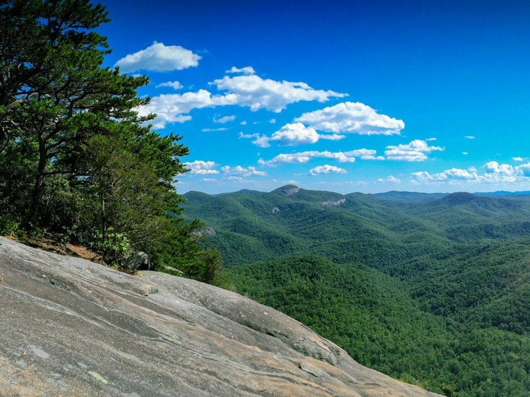 The view from Looking Glass Rock