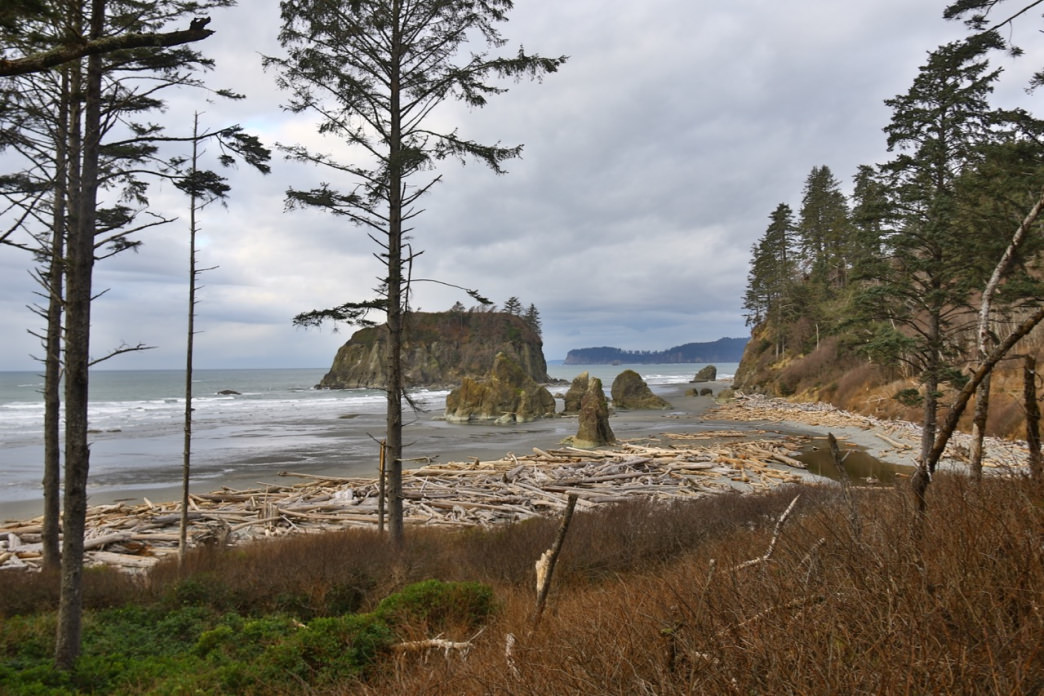 A gray day at Washington's gorgeous Ruby Beach.