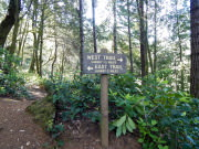 Humbug Mountain Trail
