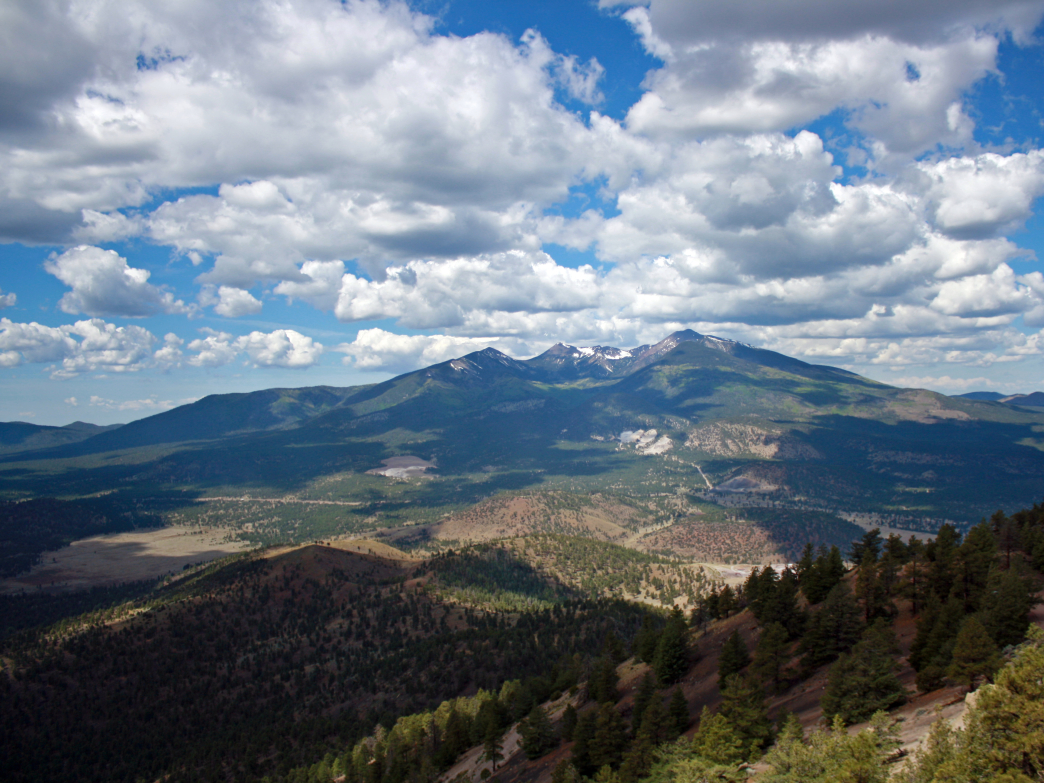 View of San Francisco Peaks from O'Leary
