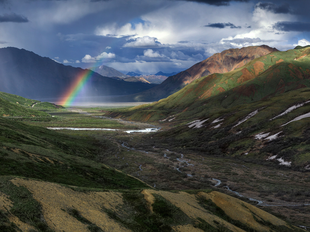 The dreamlike landscape of Denali National Park.
