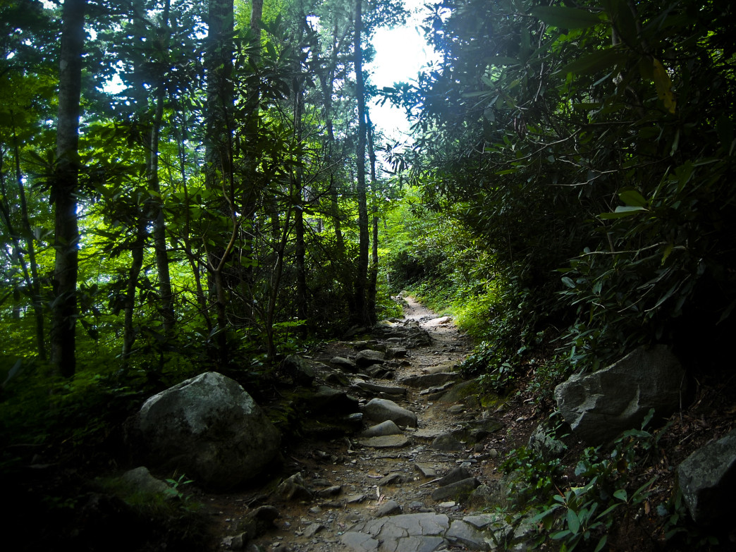 The lower portion of the Rainbow Falls Trail