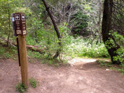 Image for Eastside Trail