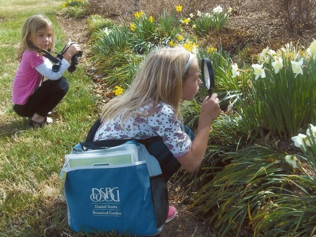 Daniel Stowe Botanical Garden summer camps teach kids about all sorts of flora
