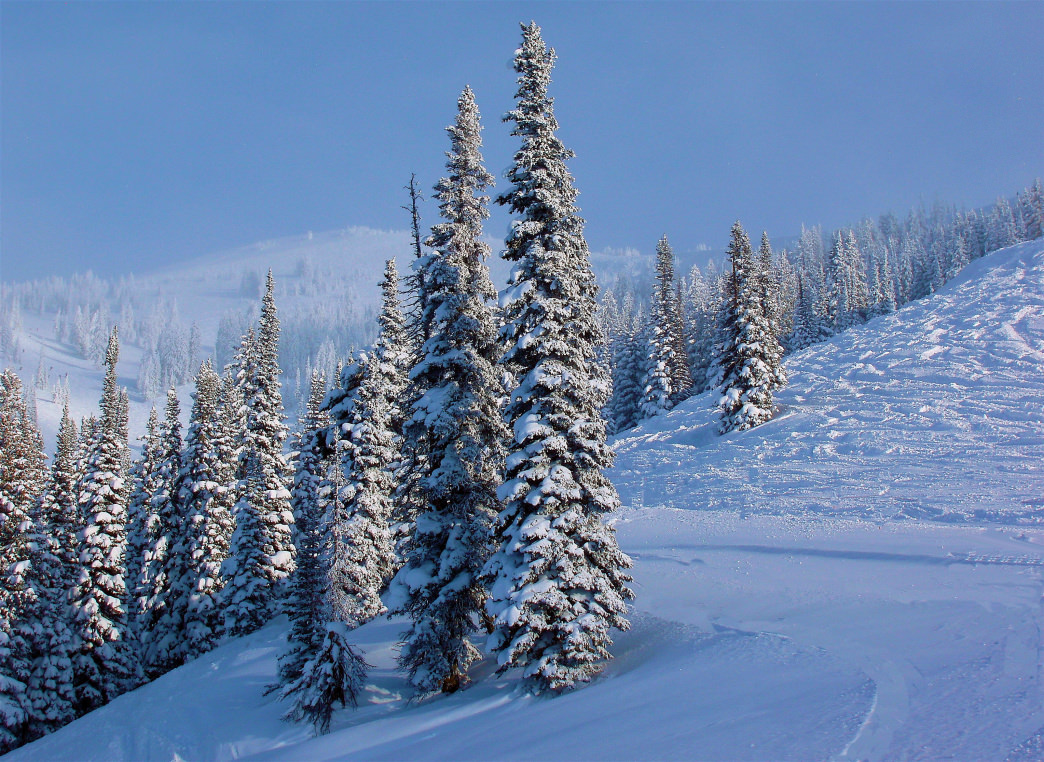 Hitting the slopes at Grand Targhee is great for all levels of skiers.