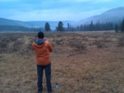Image for Pelican Creek to Lamar Valley